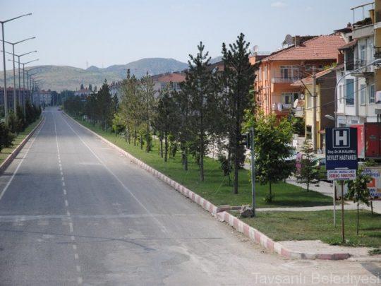 agaclandirma01