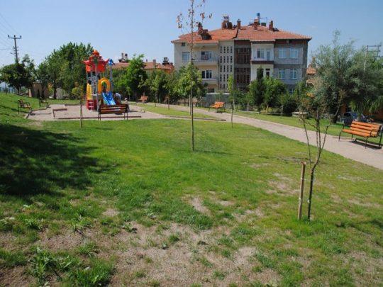 dagcespark01