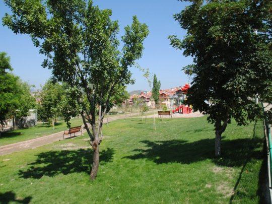 dagcespark07